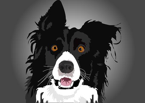 Hundehistorie