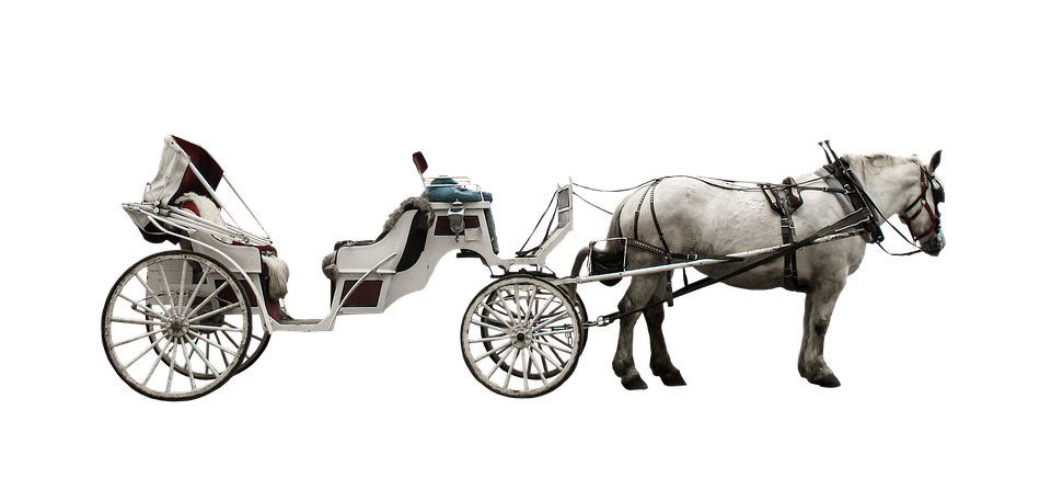 horse drawn carriage coach traffic free photo on pixabay