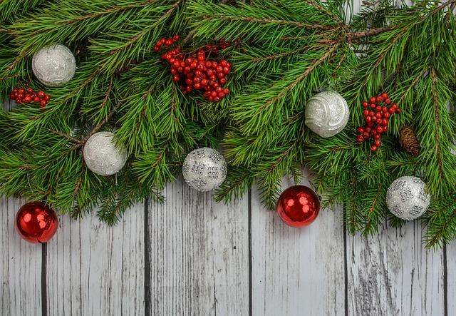 Noël, Décoration, Vacances, Célébration, Branches