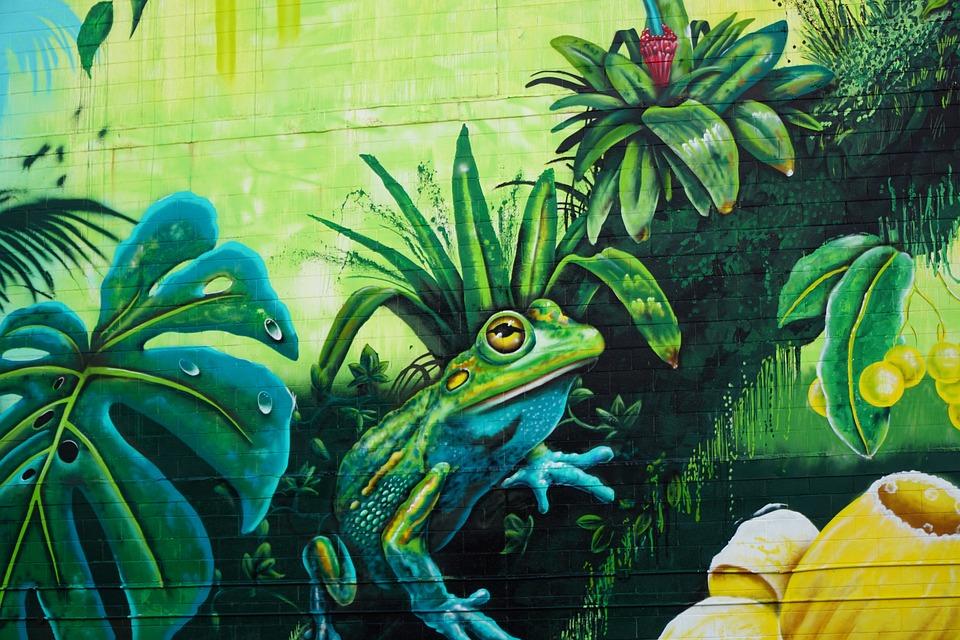 Streetart Darwin Kurbağa Pixabayde ücretsiz Fotoğraf