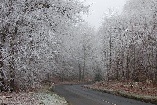 雪, 冰, 冬天, 结冰的路面, 冷, 霜