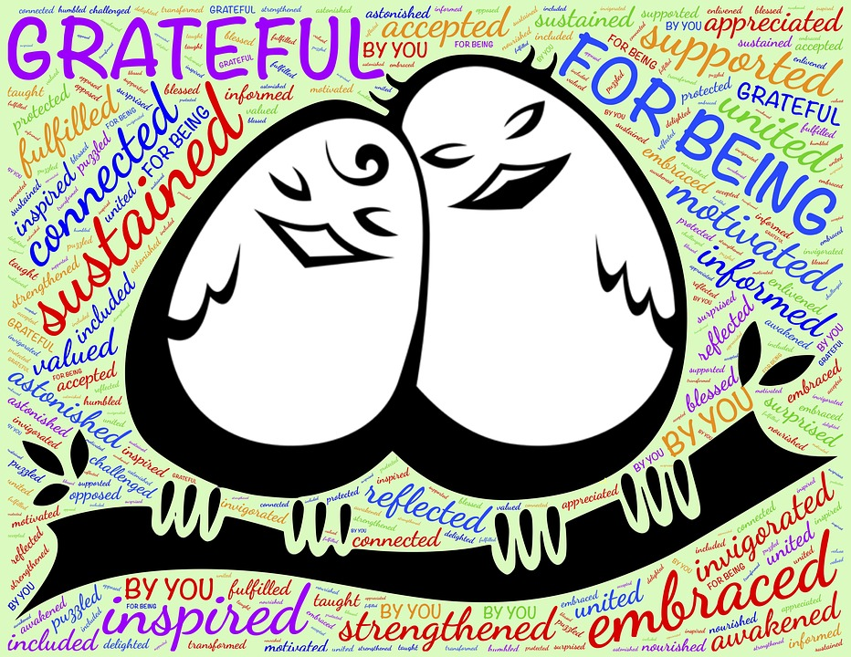 500+ Free Gratitude & Thank You Images - Pixabay