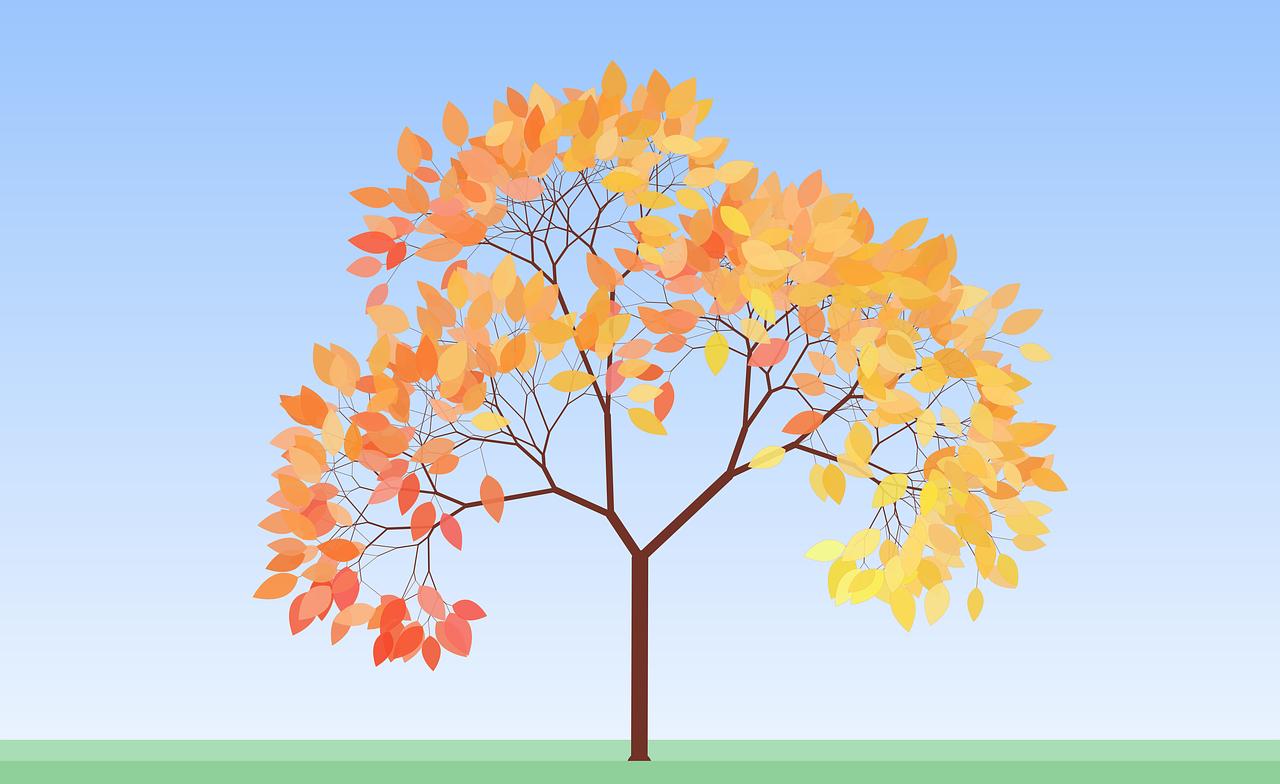 Картинка осеннее дерево с листочками
