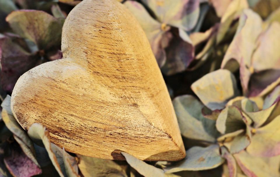 心, 木の心臓, あじさい, 花, 木, 愛, 自然, シンボル, ロマンス, ようこそ, ロマンチックな