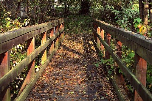 欄干, ブリッジ, 木造, 公園, 古い, 秋, 梁, 葉, 橋, スペーサー