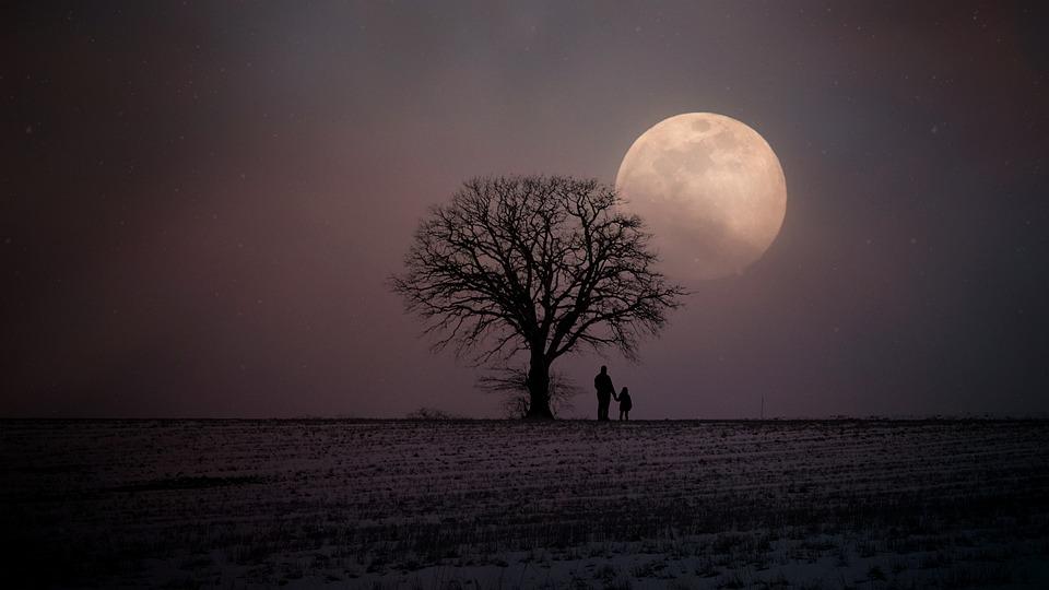 Invierno, Invernal, Luna, Humanos, Padre E Hijo