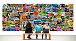 gallery, photos