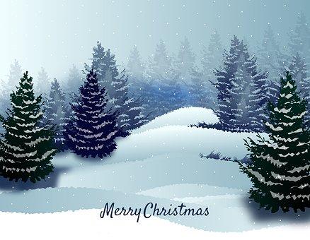 Sapins de Noel