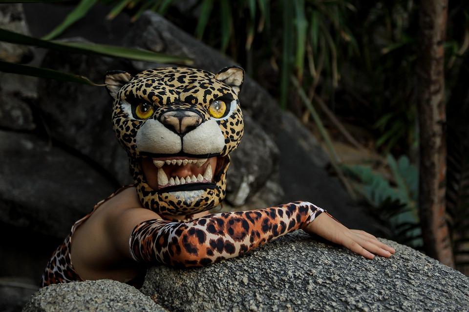 Jaguar Rocks Animal Natural Costume Travel
