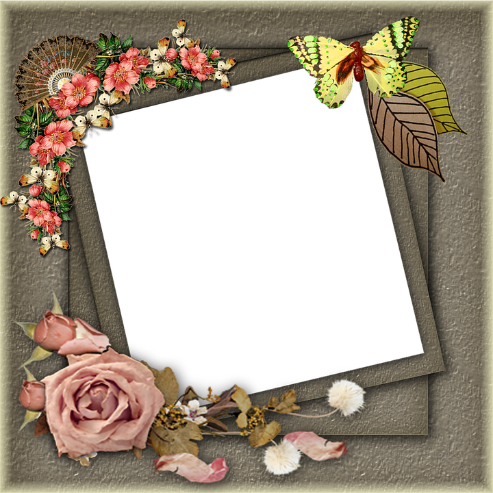 Frame Png Pictures · Free image on Pixabay