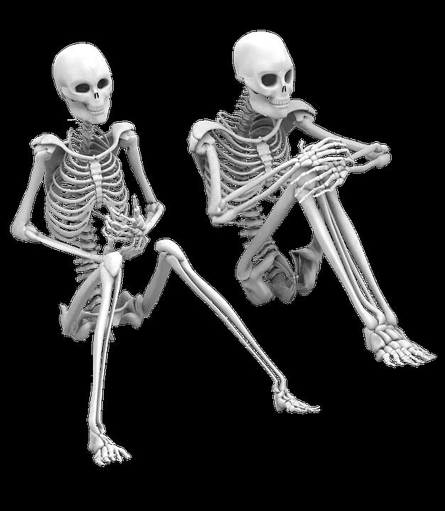 Esqueleto Sentado Aislado · Imagen gratis en Pixabay