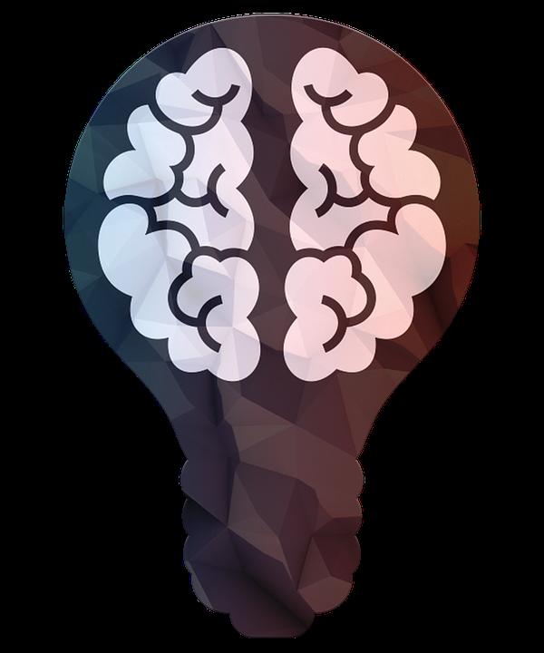 La Science Cerveau Ampoule - Image gratuite sur Pixabay
