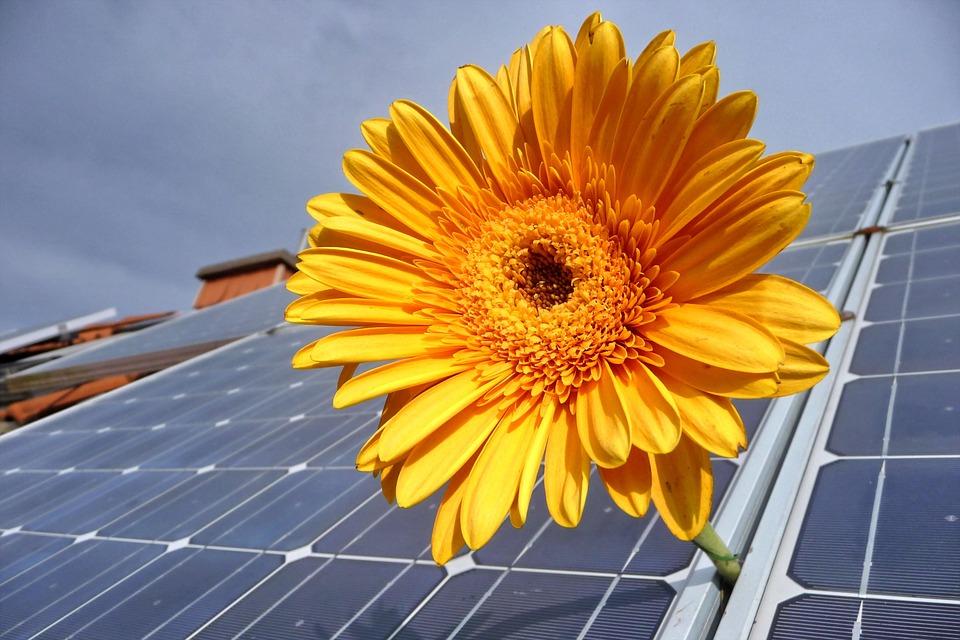 Solar, Photovoltaik, Erneuerbar, Solarenergie