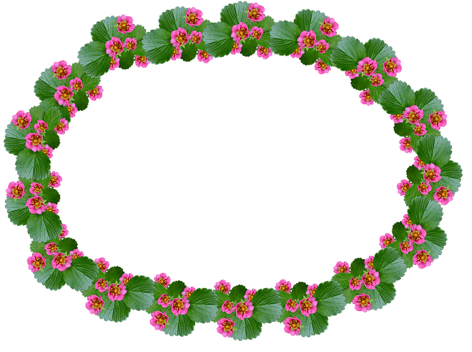 Frame Strawberry Pink · Free photo on Pixabay