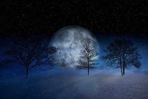 Winter, Wintry, Moon, Christmas, Snow