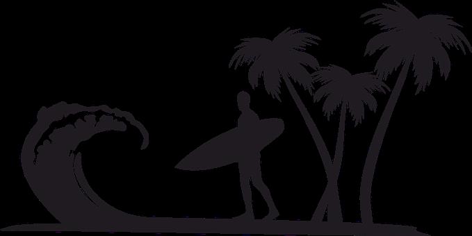 Palmiers, Surfeur, Plage, Vague, Surf