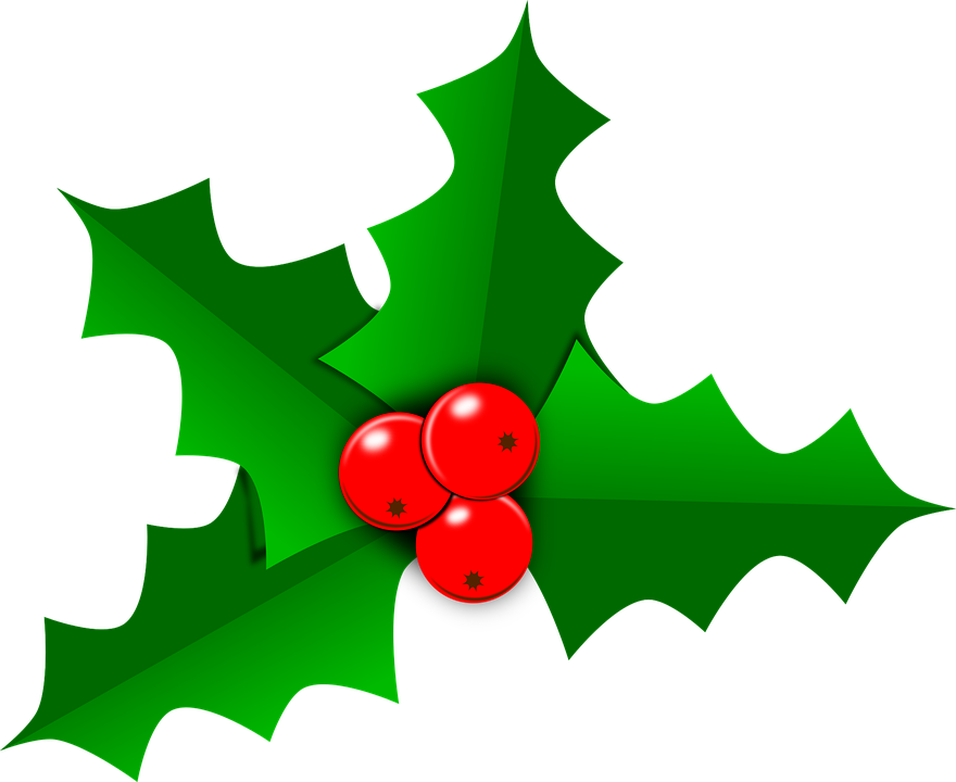 holly christmas leaf free vector graphic on pixabay