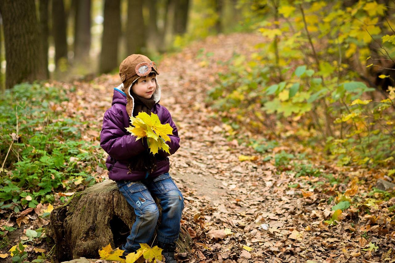 Дети в осеннем лесу картинки