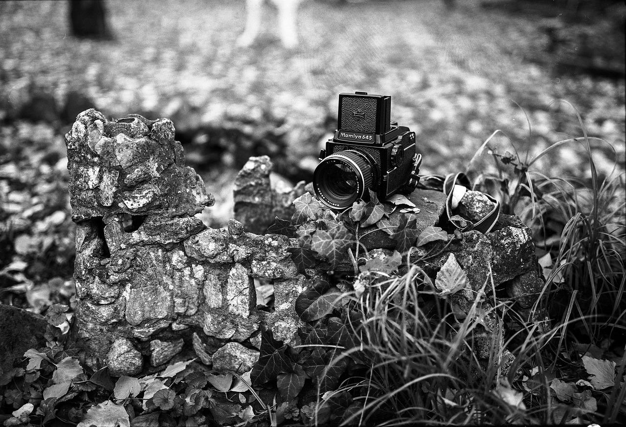 отличительной чертой портрет на пленочный фотоаппарат детей происходит