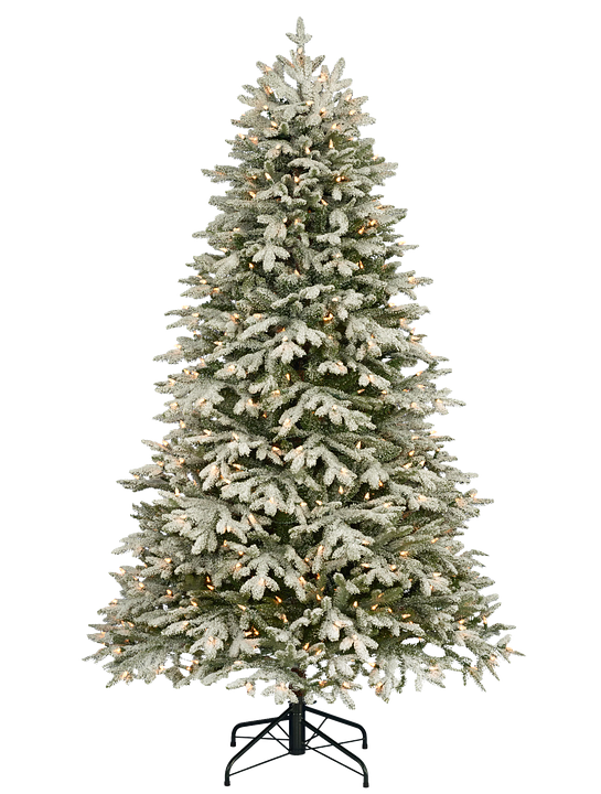 4 000 Christmas Tree Images Pictures Hd Pixabay Pixabay