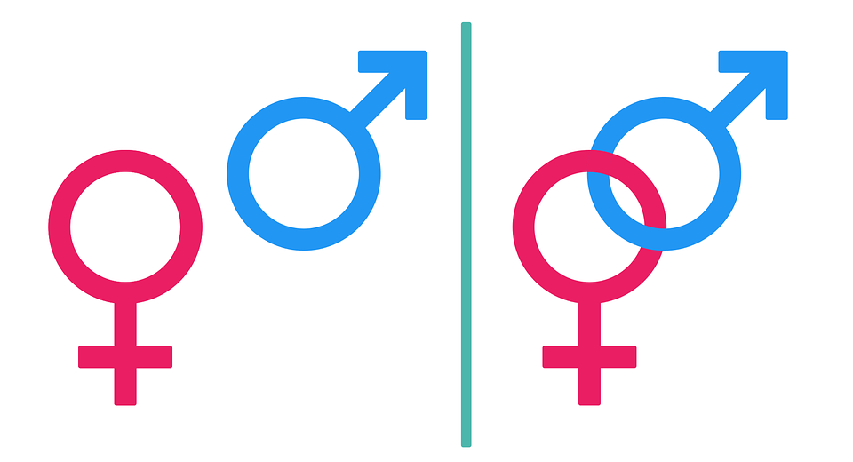 Gender Symbol Male Free Vector Graphic On Pixabay