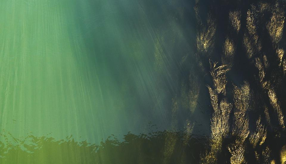 Subacquea, Vista Dall'Alto, Acque Superficiali