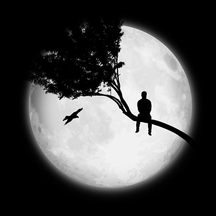 moon-2966579_960_720.png