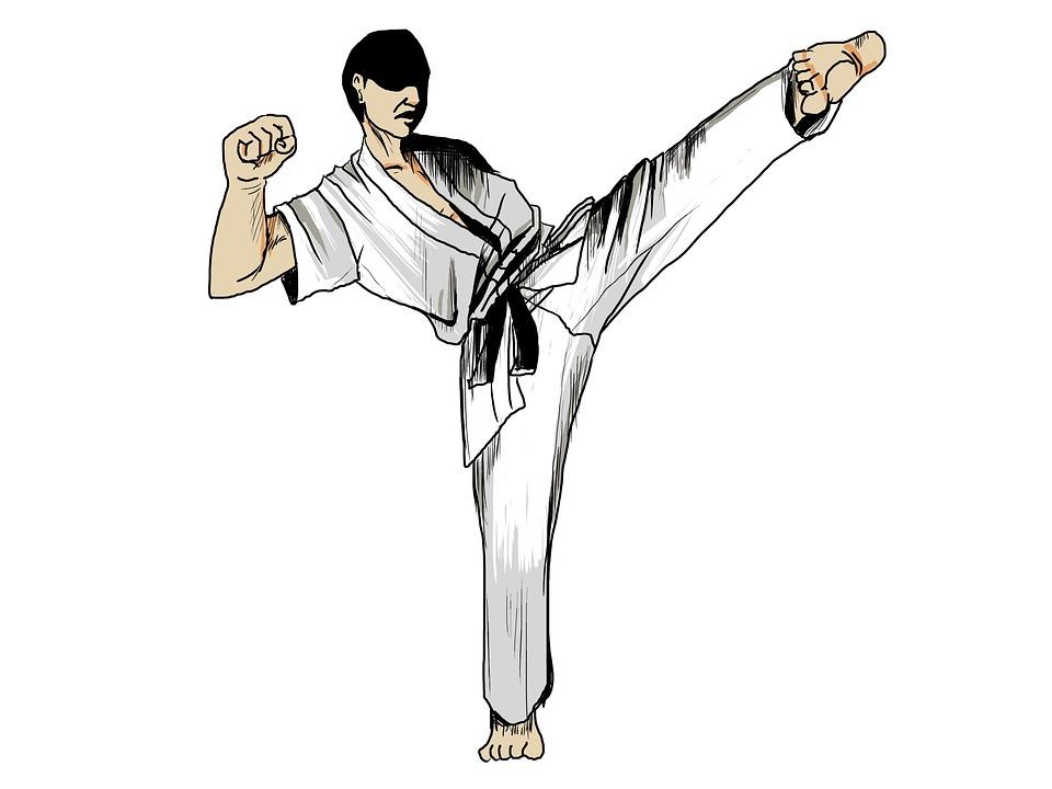 Karate Martial Arts Sports · Free image on Pixabay