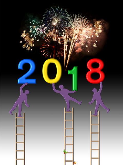 2018 New Year Party