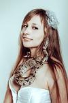 boa constrictor, snake