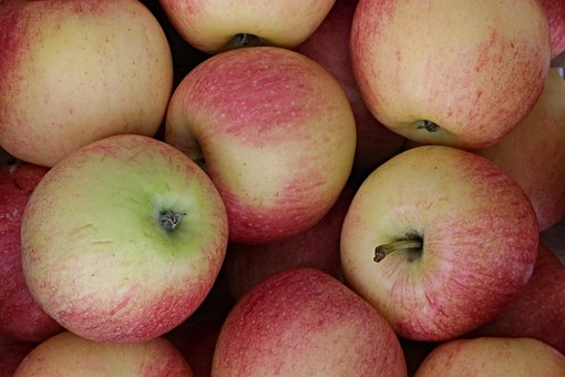 60+ Free Red Pome Fruit & Pome Fruit Photos - Pixabay