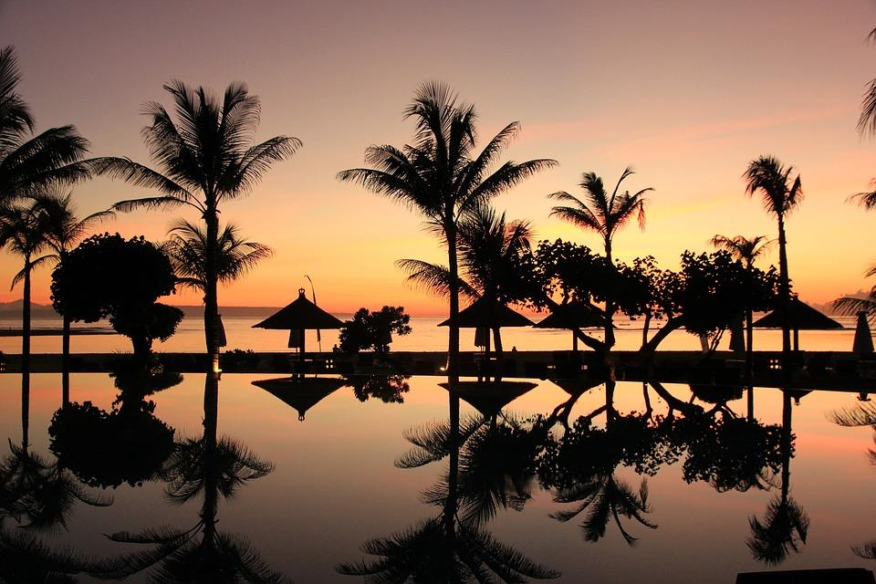 Bali, Palma Drzewa, Zachód Słońca, Podróży, Indonezja