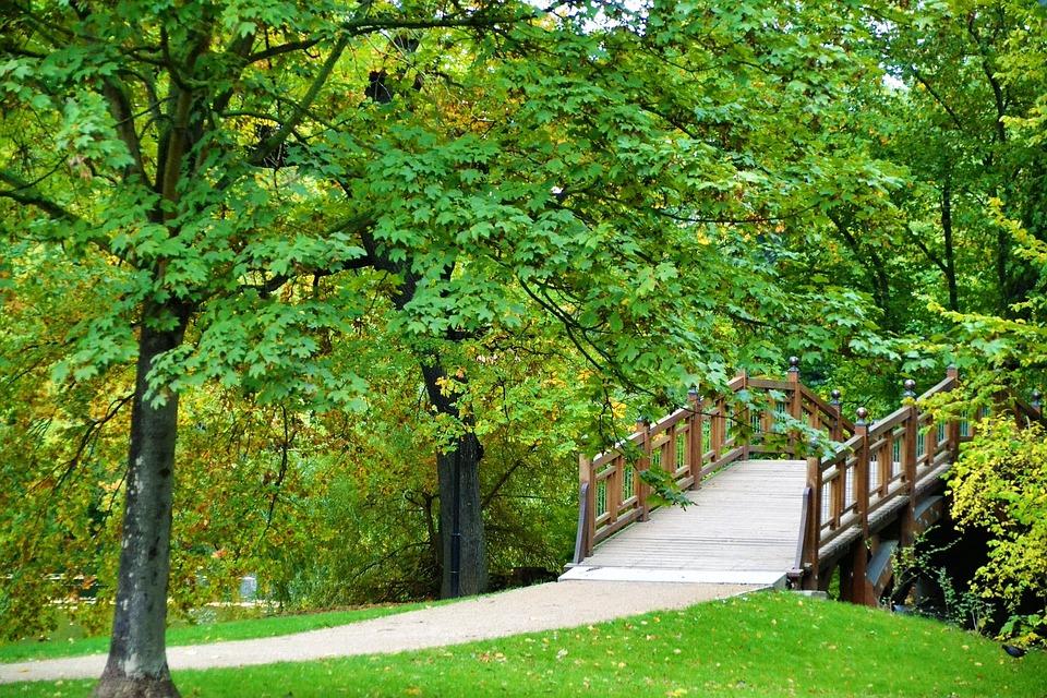 Resultado de imagen para naturaleza parque