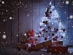 advent, fir, christmas tree