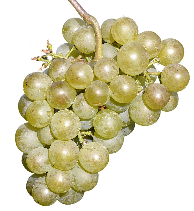 Wine Grapes Free Fruit Delicious Free Photo On Pixabay