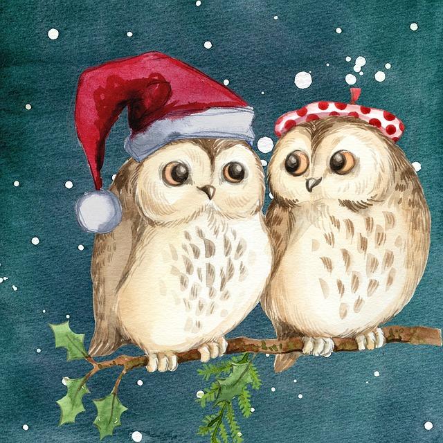 Зимние новогодние картинки с совами, шалом