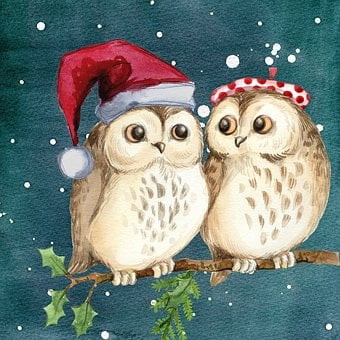 Merry Christmas, Owls, Watercolor