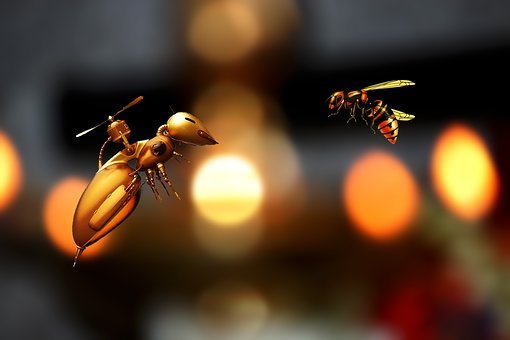 Bee, Abstract, Insect, Nature, Honey