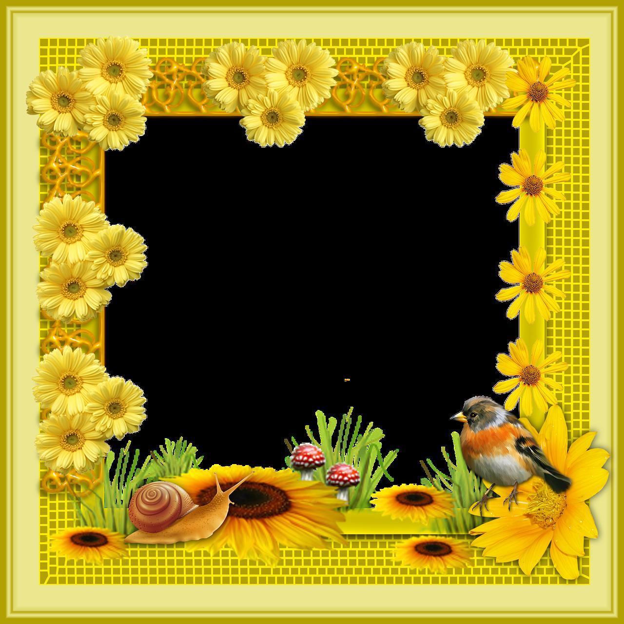 Cerceve Cicekler Png Pixabay De Ucretsiz Resim