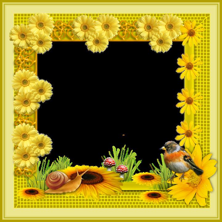 Marco Flores Png · Imagen gratis en Pixabay