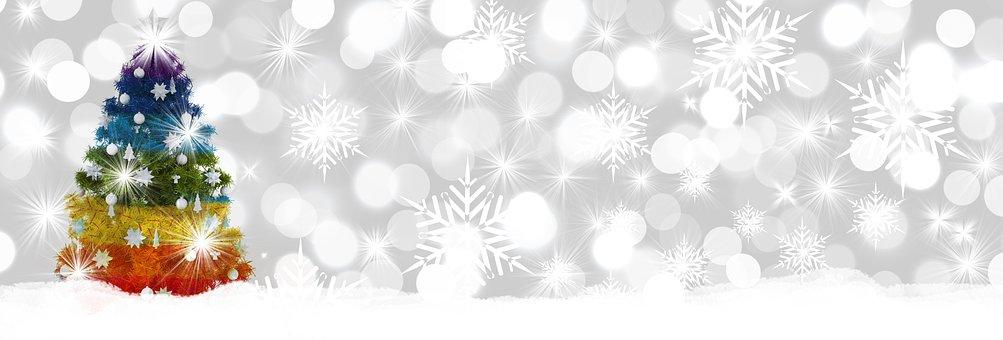Christmas, Fir Tree, Bokeh, Winter