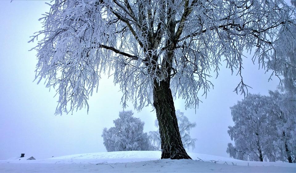 """Képtalálat a következőre: """"téli kép"""""""