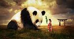 panda, bear, japan