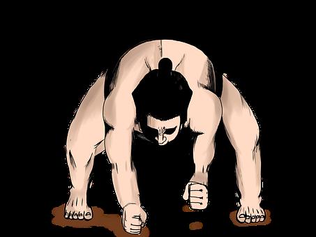相撲, 力士, スポーツ, 土俵入り