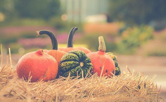 Pumpa, Hösten, Orange, Oktober
