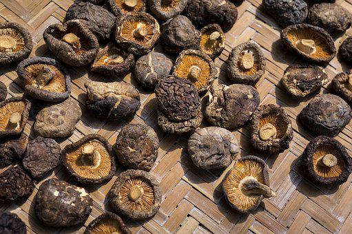 Food, Shiitake Mushrooms, Dried