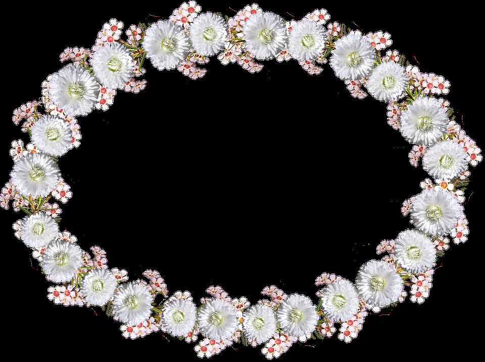 Marco Frontera Margarita Floral · Foto gratis en Pixabay