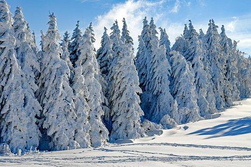 winterlandschaft bilder pixabay kostenlose bilder herunterladen. Black Bedroom Furniture Sets. Home Design Ideas