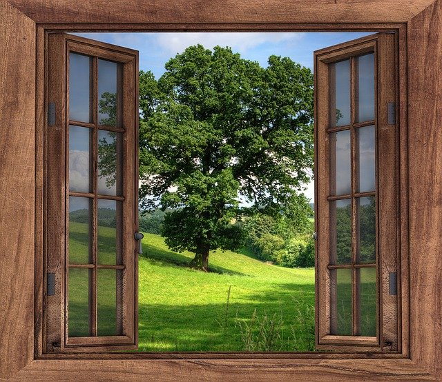 Window View Tree 183 Free Photo On Pixabay