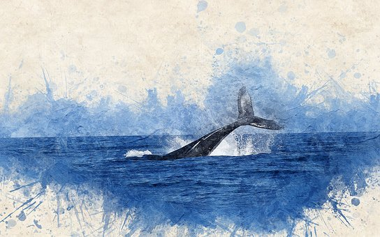 Whale, Watercolor, Sea